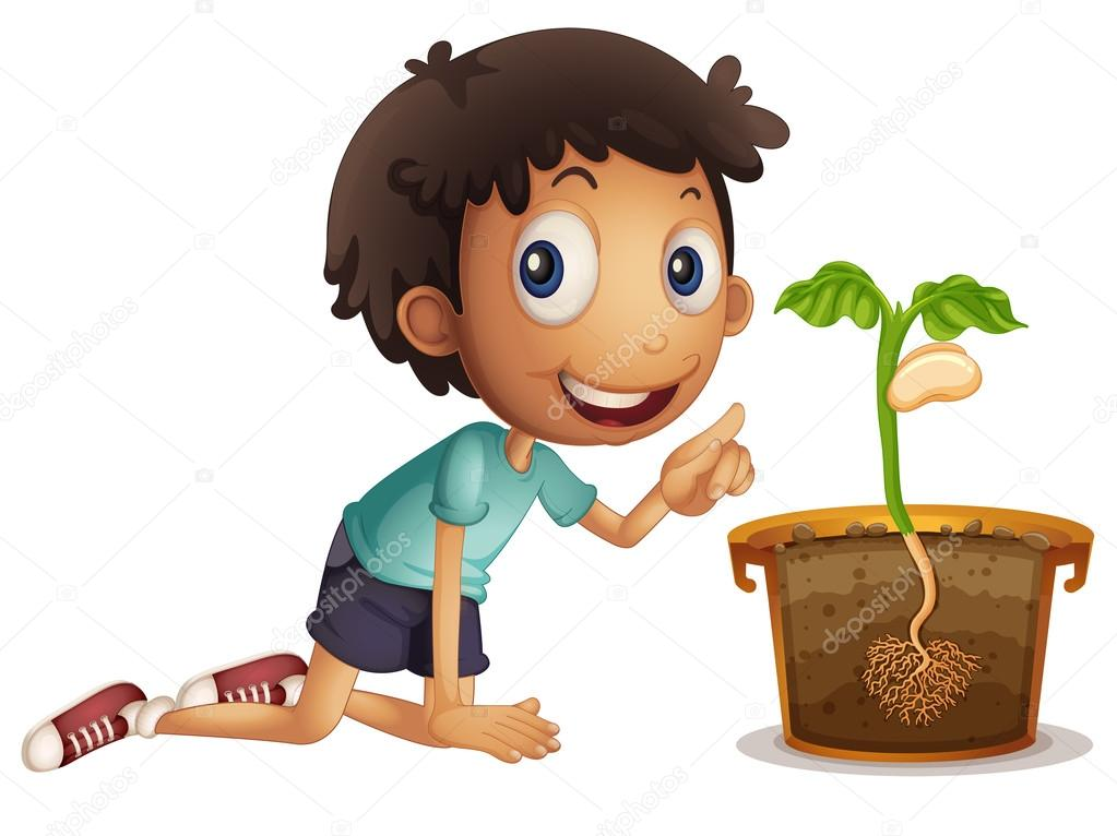 Boy planting seed in the pot — Stock Vector ...