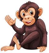 Fotografie Obrázek opice