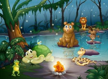 Animal and campfire Illustration