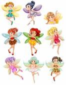 Photo Fairies