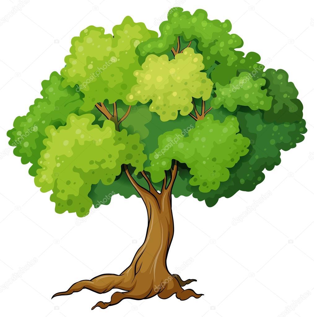 árbol #hashtag