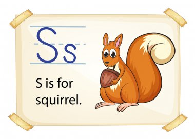 A letter S for squirrel