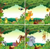 Zvířata a lesy