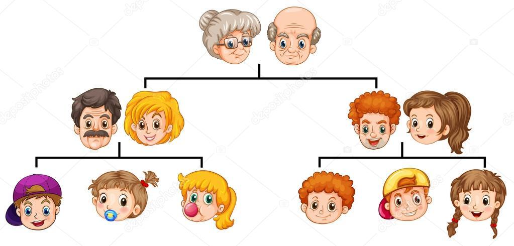 Dibujos Arbol Genealogico Con árbol Genealógico Vector De Stock