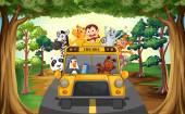 Zvířata a autobusy