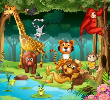 Animals and forest