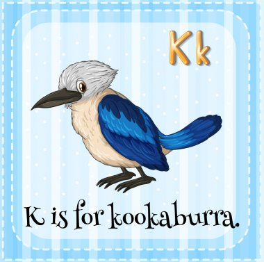 Flashcard letter K is for kookaburra.