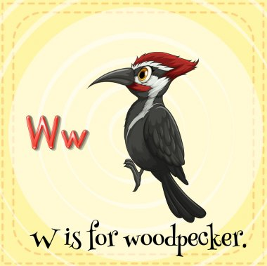 Flashcard letter W is for woodpecker.