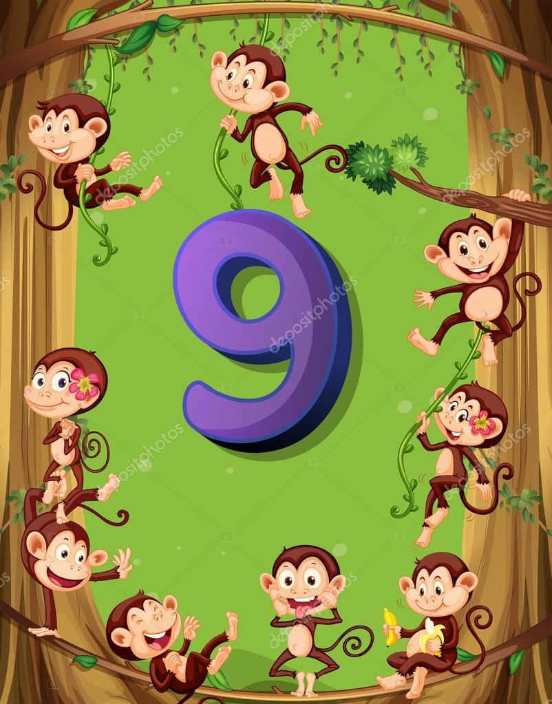 Nummer neun mit 9 Affen auf dem Baum — Stockvektor © interactimages ...