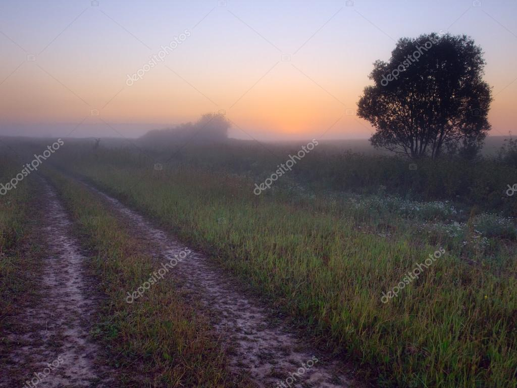 Фотообои Ранний утренний пейзаж