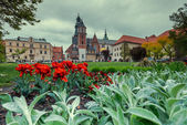 Photo Medieval Wawel castle with red flowers
