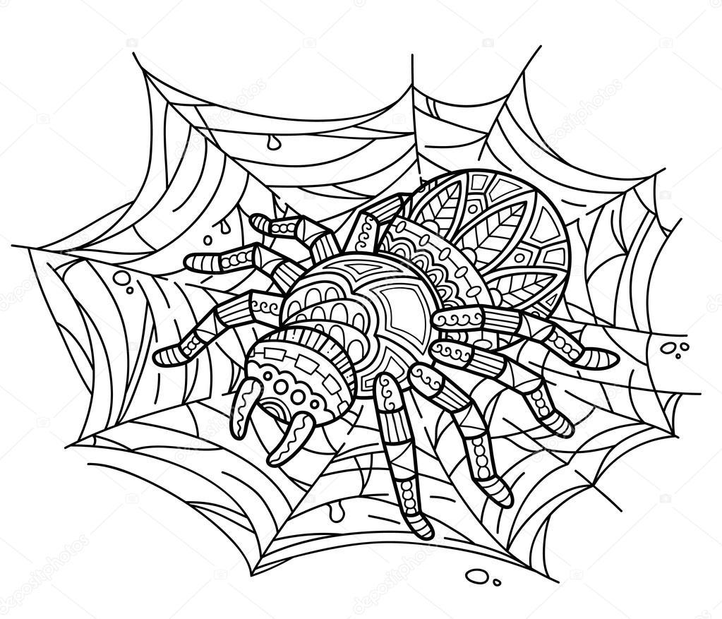 Mono Araña En Web Vector De Stock Boyusya 100911838