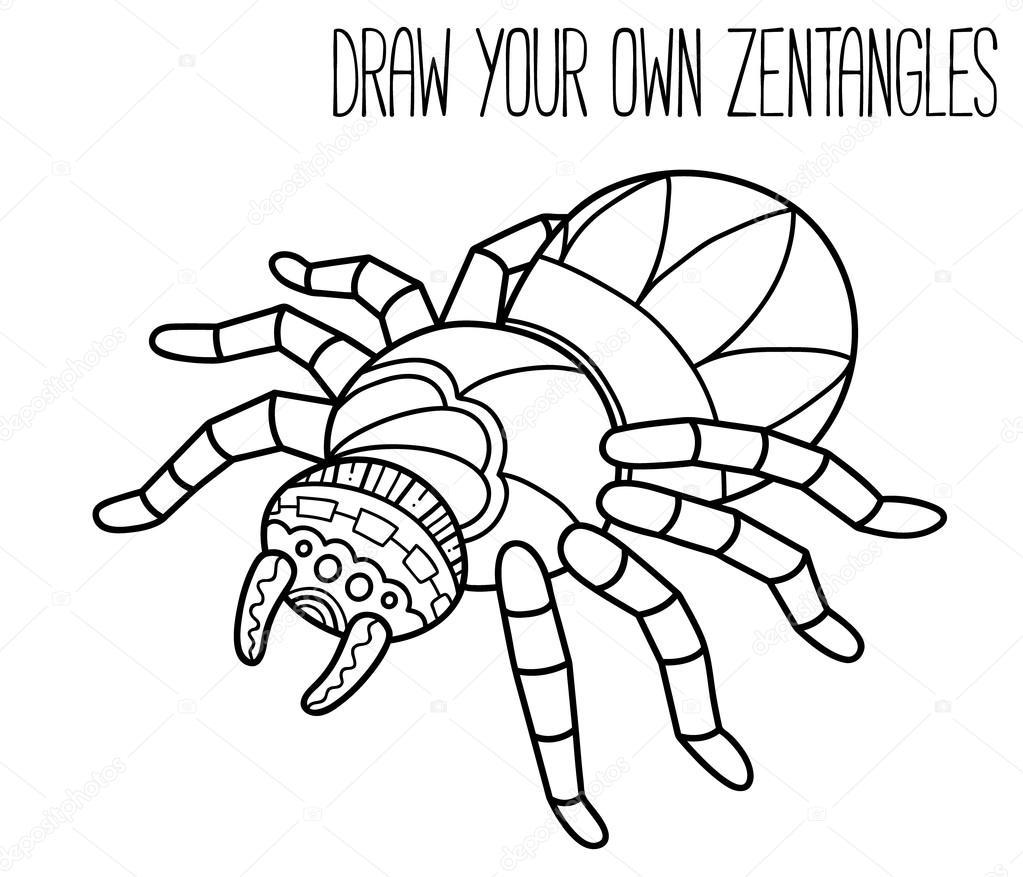 Mono Cariblanco Para Dibujar Esquema De Araña Lindo