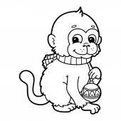 Photo funny monkey.