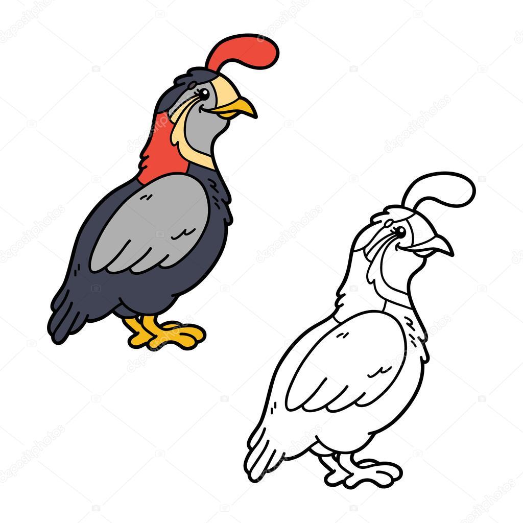 funny quail coloring page. — Stock Vector © boyusya #87403642