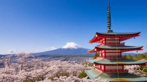 4k Timelapse Mt. Fuji s Chureito Pagoda na jaře, Fujiyoshida, Japonsko