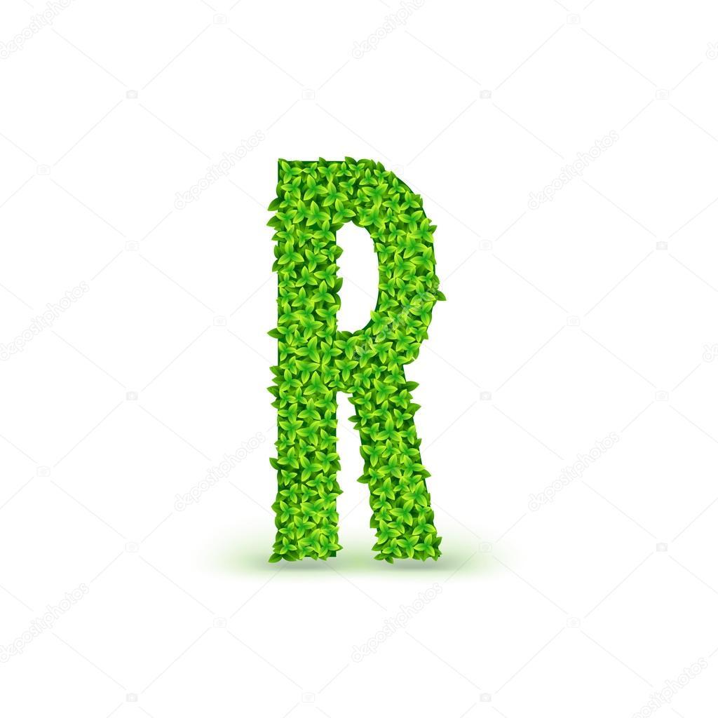 Hojas verdes fuente R — Archivo Imágenes Vectoriales © master-erik ...