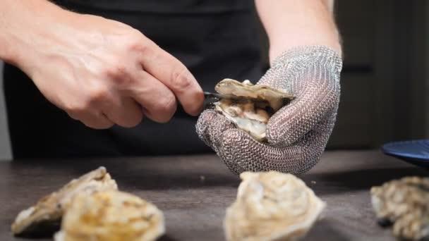 Luxus-Fischrestaurant der gehobenen Klasse. Der erfahrene männliche Koch öffnet frische Austern mit der Hand im schützenden Kettenhandschuh und einem speziellen kurzen Messer. Zeitlupe. Volle Konzentration