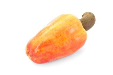 Brazilian Caju Cashew Fruit