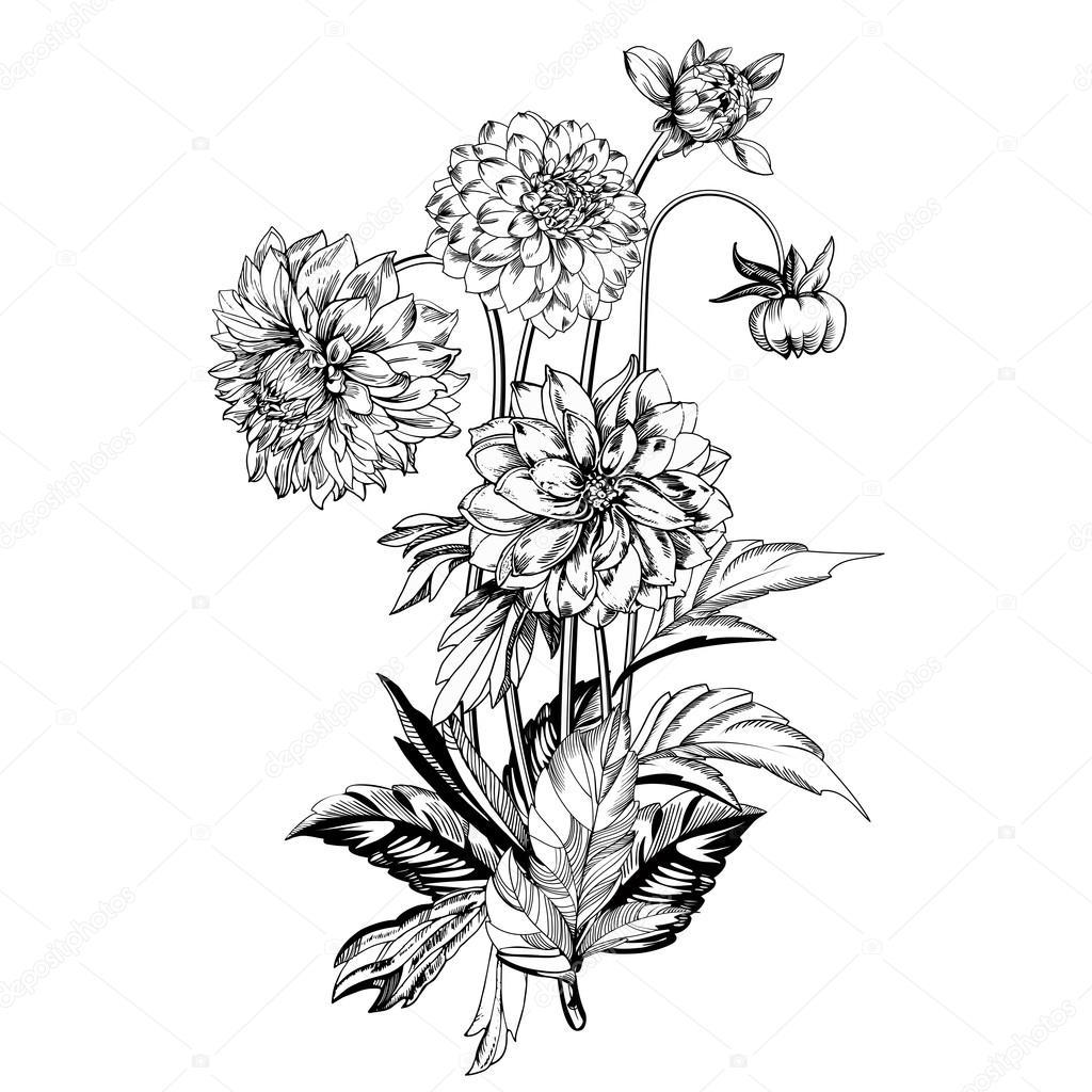 Flores Elegantes Vintage Ilustracion De Vector De Blanco Y Negro