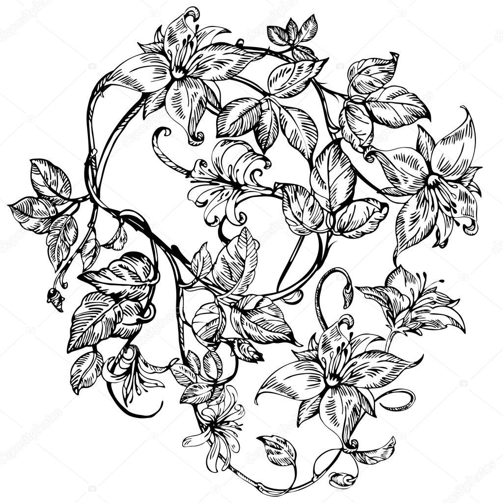 Ilustraciones De Botanica En Blanco Y Negro Flores Elegantes