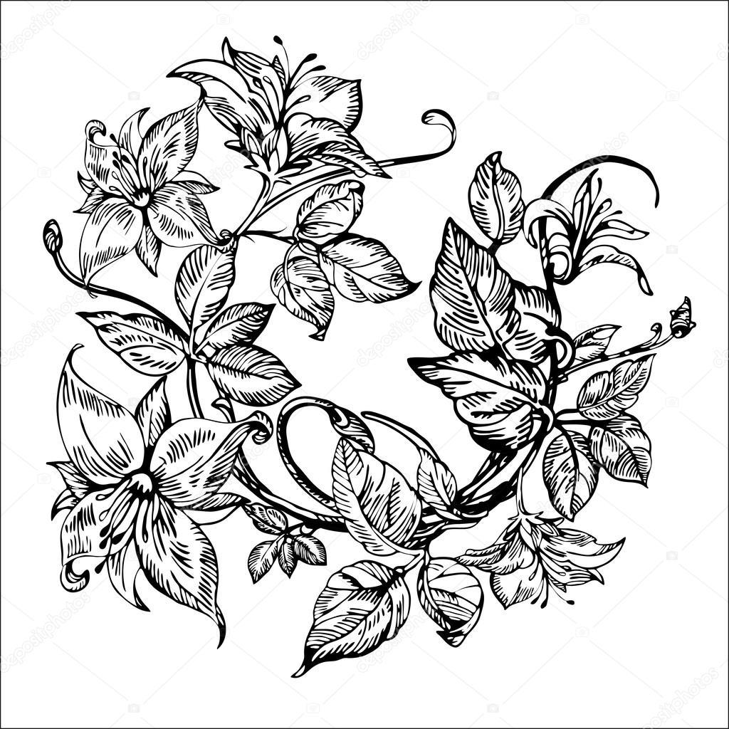 Imagenes Botanica En Blanco Y Negro Flores Elegantes Vintage