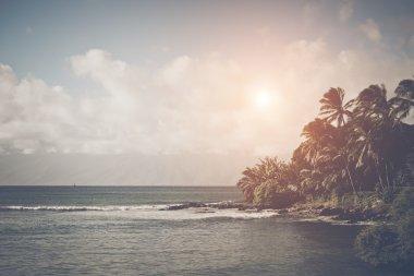 Romantic Beach in Hawaii