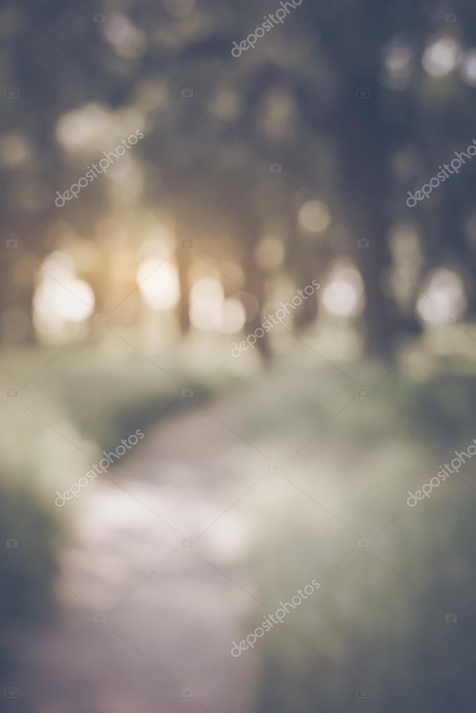 Фотообои Blurred Nature Background
