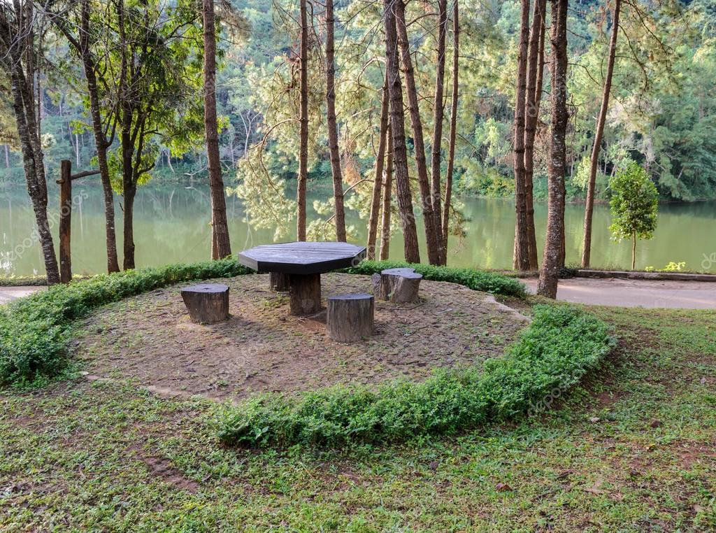 Mesa de jardín y sillas en bosque de pinos en Oung Pang nationa ...