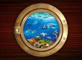 Lőrés és a víz alatti világ