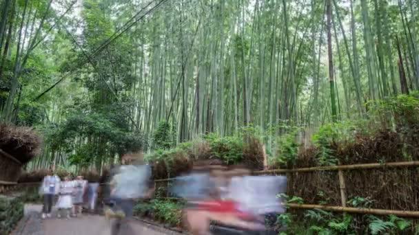 Rozmazané turistů v lese bambusu v Arashiyama, Kyoto
