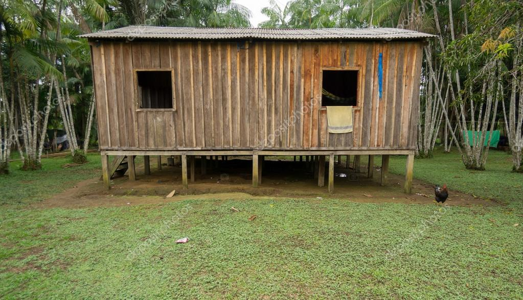 Woode houses built on high stilts, Amazon rainforest
