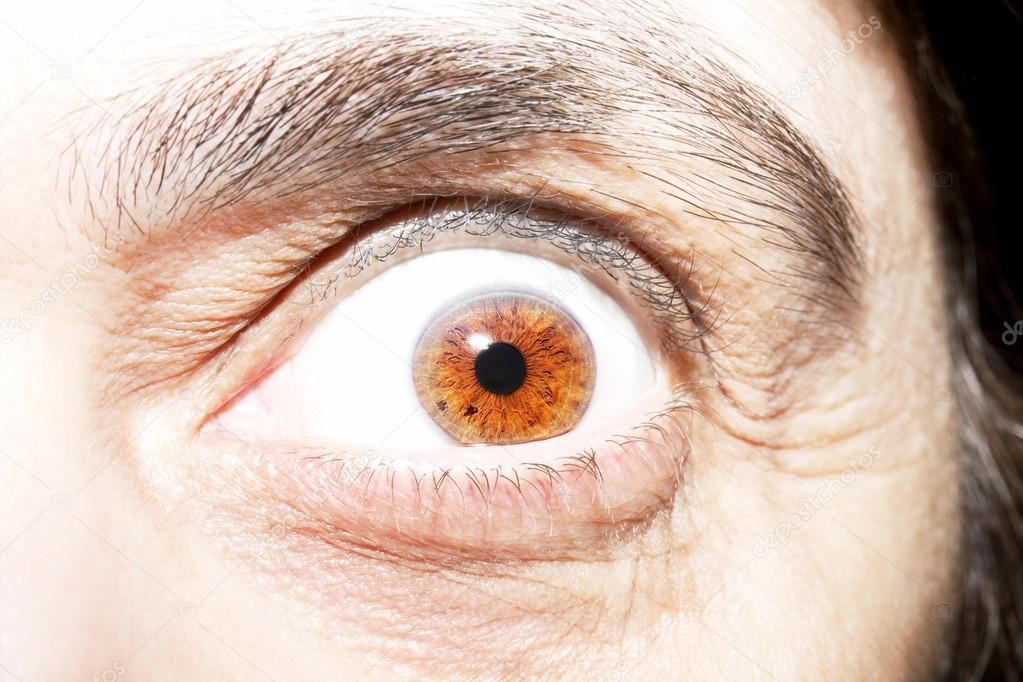 Mature brown eye