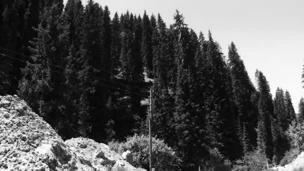 linie příspěvky na vrcholu hory a stromy keře