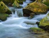 fiume di flusso della montagna