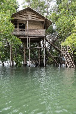 Treehouse on Neyyar River