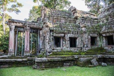 Ta Prohm Temple Structure
