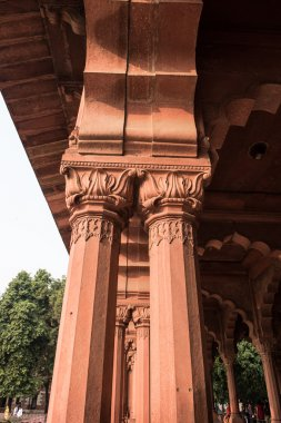 Decorated Pillars in Red Fort