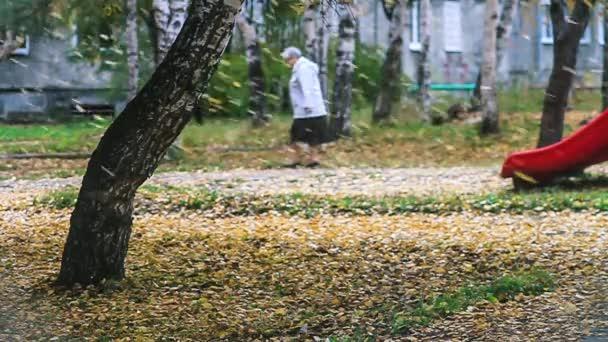 Padající listí na podzim