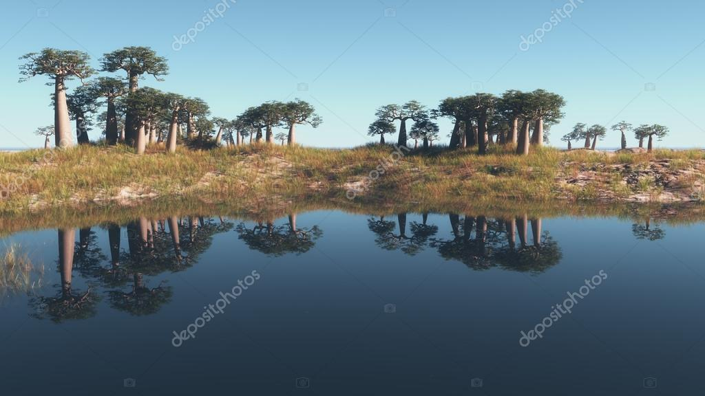 Trees reflected in the calm water