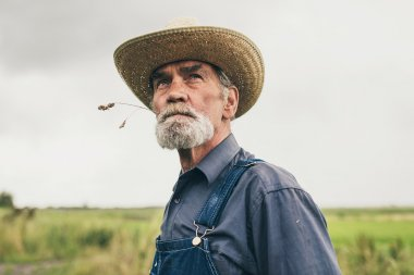 Thoughtful senior farmer chewing grass while staring into the distance, low angle head and shoulders view against a grey sky stock vector