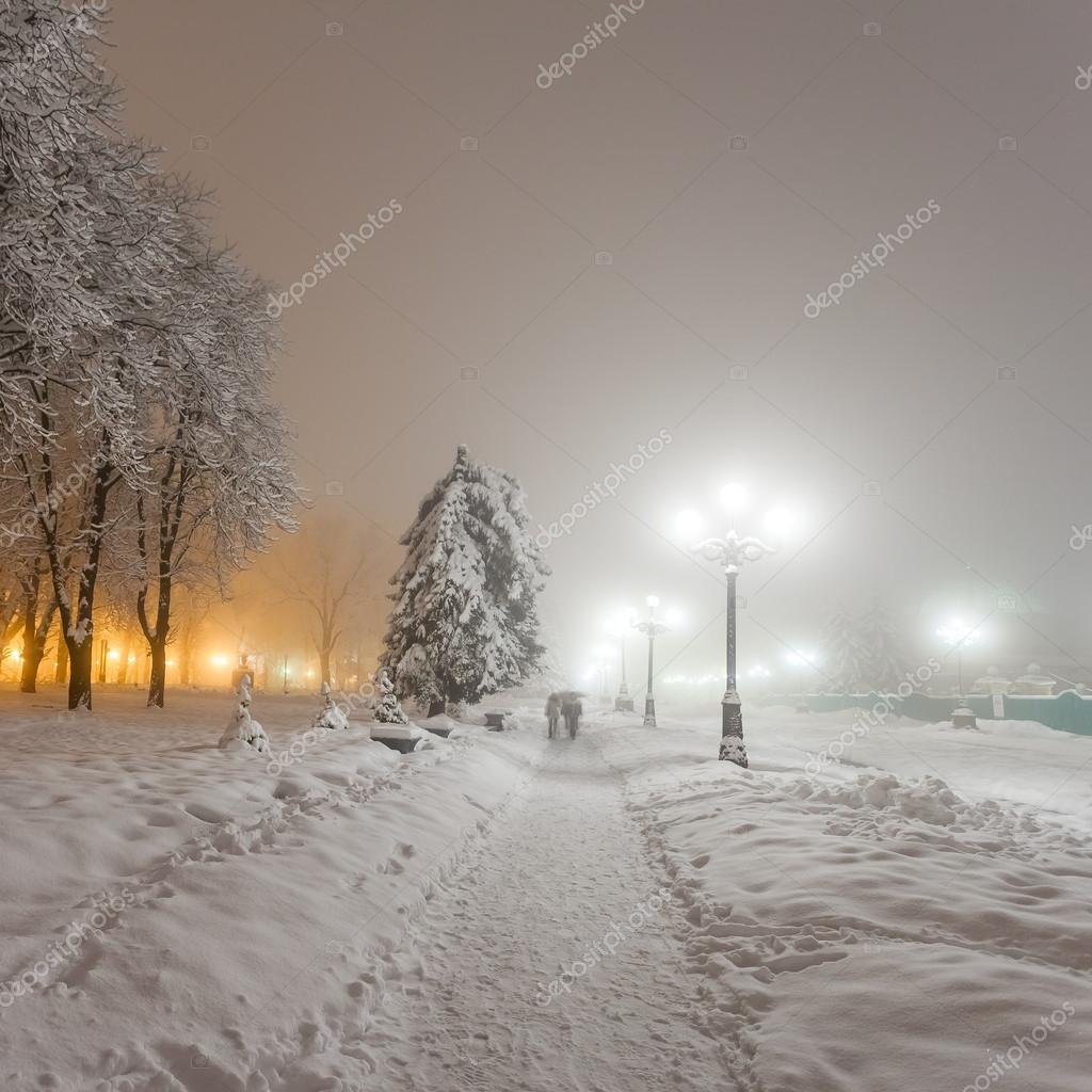 Winter city park at night. Kiev, Ukraine
