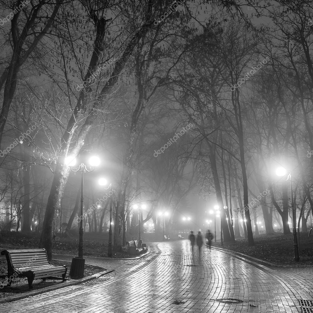 Autumn city park at night