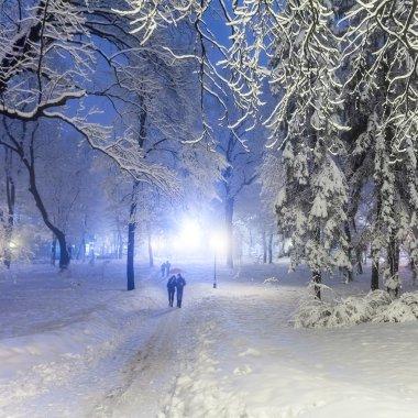 Winter city park