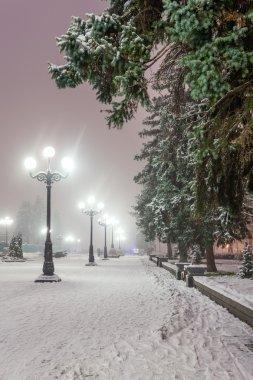 Muhteşem bir kış kenti parkında patika