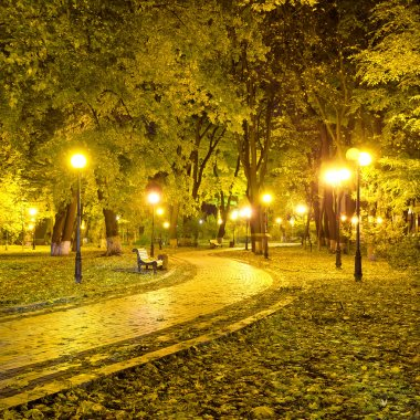 Beautiful autumn city park at night
