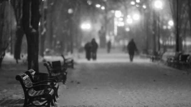 Fußweg im märchenhaften Winter-Stadtpark