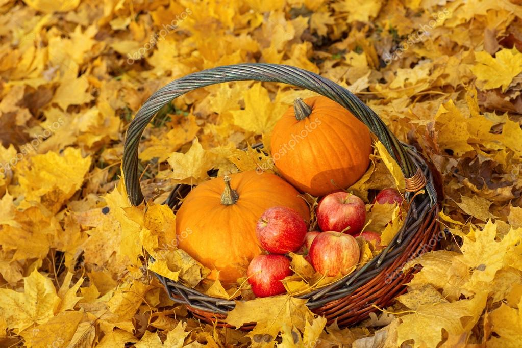 Pumpkin, apple, basket and leaves