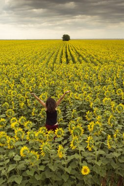 Beautiful young woman in a field of flowers having a joyful and positive attitude
