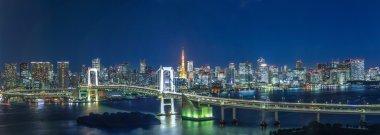 night view,Tokyo, Japan.